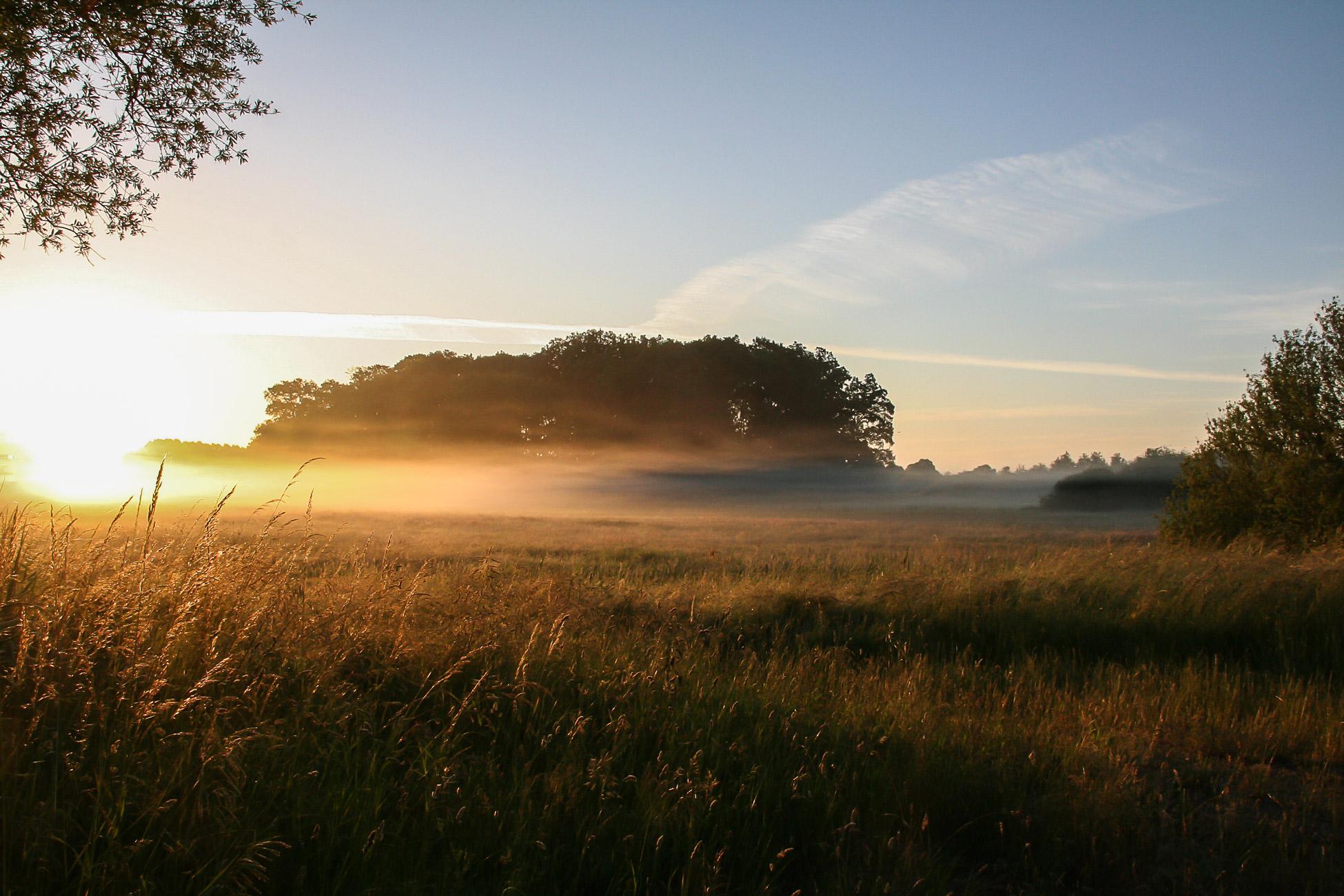 Sonnenaufgang_Goetz